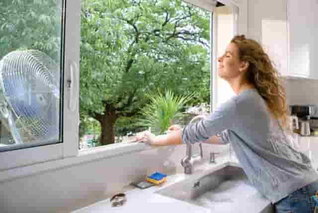 Cómo eliminar el moho en las prendas de vestir y prevención por medio de deshumidificador y ventilación